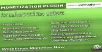 Monetize wordpress now