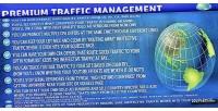 Premium wordpress plugin management traffic