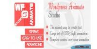 Animate wordpress studio