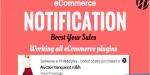 Ecommerce wordpress notification
