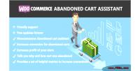 Abandoned woocommerce cart assistant
