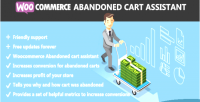 Abandoned woocommerce cart assistant