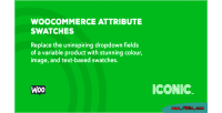 Attribute woocommerce swatches