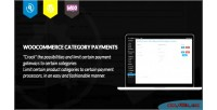 Category woocommerce payments