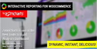 Interactive woocommerce zoomcharts by reporting