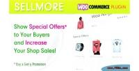 Sellmore woocommerce