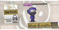 Woocommerce wspay payment gateway