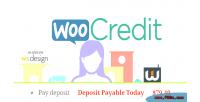 Woocoomerce woocredit deposit system