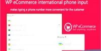 Ecommerce wp input phone international