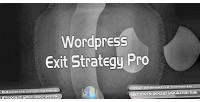Exit wordpress strategy pro