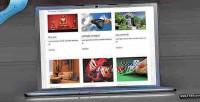 Display ts portfolio plugin gallery and