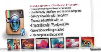 Gallery instagram wordpress plugin
