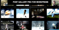 Gallery post wordpress for pro