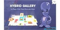 Hybrid gallery visual gallery wordpress for plugin