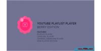 Playlist youtube player