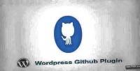 Github wordpress plugin