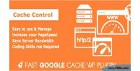 Google fast plugin wordpress cache