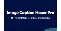 Image caption hover pro composer visual for