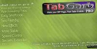 Pro tabgarb plugin tab wordpress