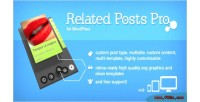 Posts related wordpress for pro