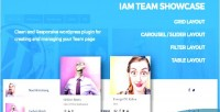 Responsive iam team plugin wordpress showcase