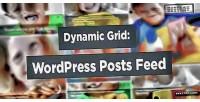 Grid dynamic wordpress slider feed posts