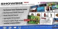 Pro showbiz responsive plugin wordpress teaser