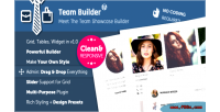 Team builder meet the plugin wordpress team