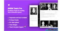 The team pro team plugin wordpress showcase