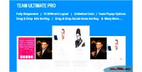 Ultimate team pro plugin team wordpress