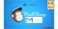 Mailchimp wordpress subscription plugin