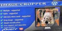 Cropper image wordpress for uploader