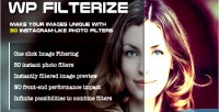 Filterize wp instant filters photo wordpress for plugin