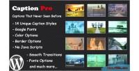 Pro caption image plugin wordpress caption