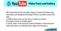 Youtube wp videos gallery & posts