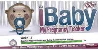 My baby pregnancy due wordpress for tracker