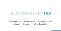 Hours business plugin wordpress pro