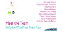 Meet the team exclusive page team wordpress