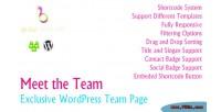 Meet the team exclusive page team wordpress