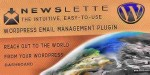 Intuitive newslette management email wordpress