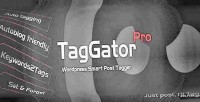 Pro. taggator wordpress plugin tagging auto
