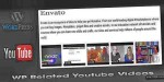Related wp youtube videos