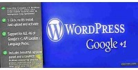 1 google for wordpress