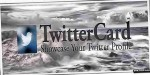 Showcase twittercard profile twitter your