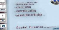 Social wordpress counter