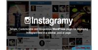 Wordpress instagramy plugin
