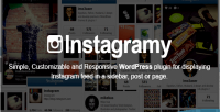 Wordpress instagramy plugin