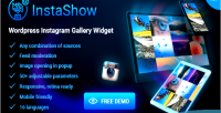 Wordpress instashow widget gallery instagram