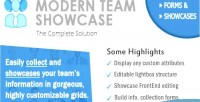Team modern plugin wordpress showcase