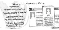 Author custom box